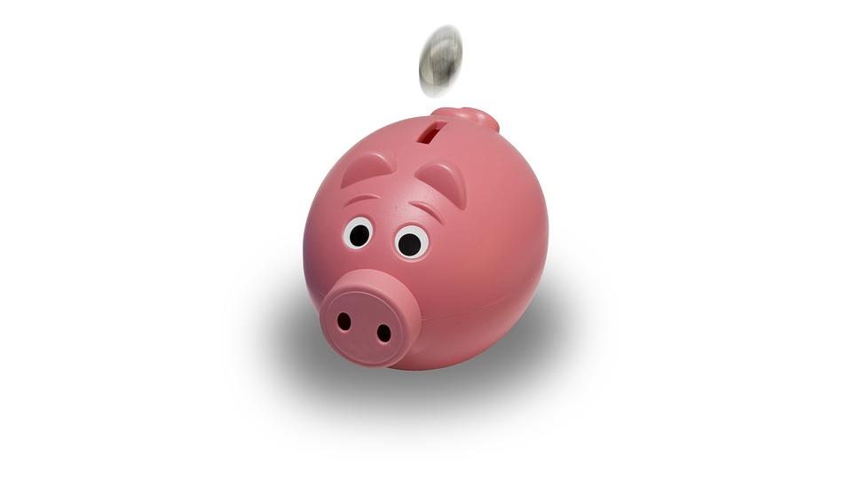 maialino-denaro