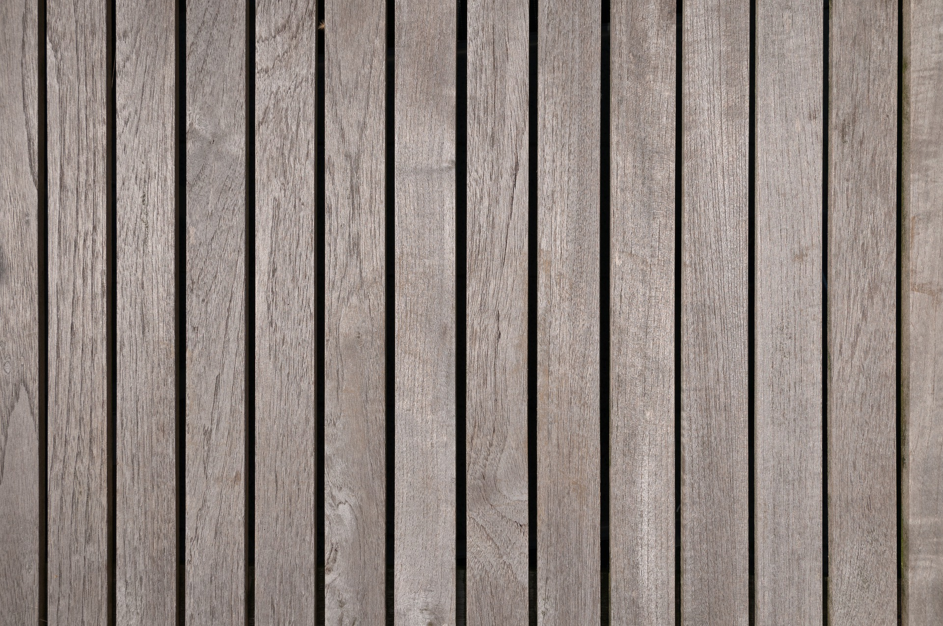 1 wood-4621862_1920